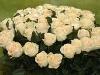 kwiatek-1